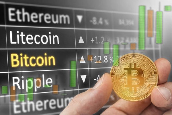 CryptoHamster – последние новости о криптовалюте